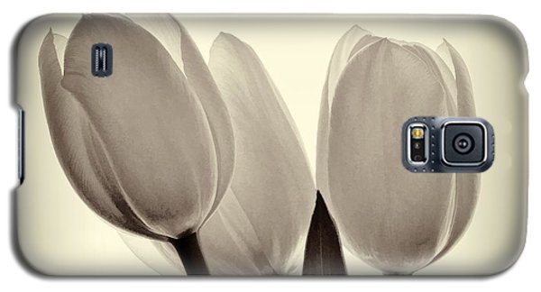 Monochrome Tulips With Vignette Galaxy S5 Case