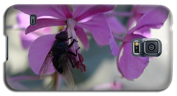 Galaxy S5 Case featuring the photograph Montana Black Fly by Joel Deutsch