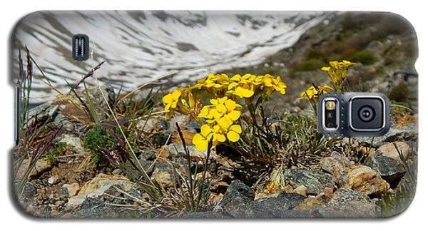 Blue Lakes Colorado Wildflowers Galaxy S5 Case
