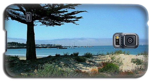 Monterey Dunes Galaxy S5 Case