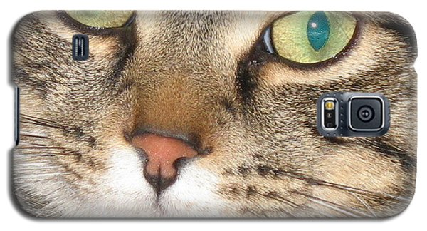 Galaxy S5 Case featuring the photograph Monty The Cat by Jolanta Anna Karolska