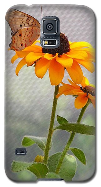 Moody Garden Beauties Galaxy S5 Case