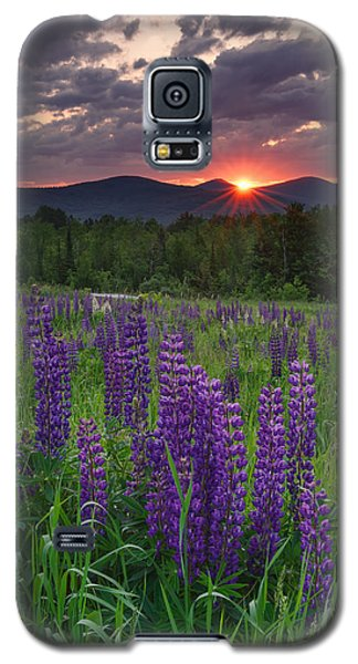 Moody Sunrise Over Lupine Field Galaxy S5 Case