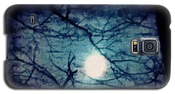Skylines Galaxy S5 Case - Moon Framed By Tree Branches by Genevieve Esson