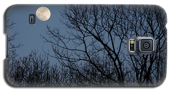 Moon Over Trees Galaxy S5 Case