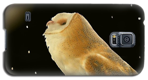 Moon Owl Galaxy S5 Case