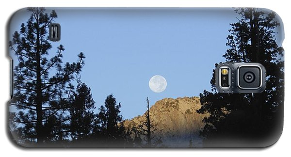 Moon Setting In Pines At Sunrise Galaxy S5 Case