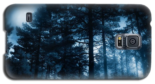 Moonlit Night Galaxy S5 Case