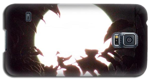 Moonshine 15 Flying Sea Horse Pt2 Galaxy S5 Case