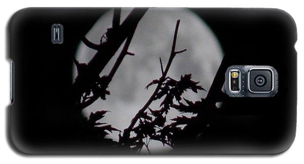 Moonshine 6 Galaxy S5 Case