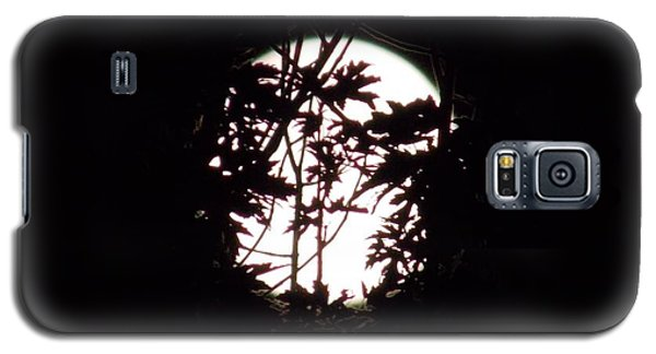 Moonshine 9 Beyond The Forest Galaxy S5 Case