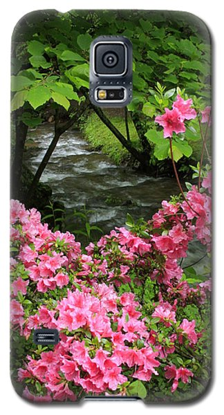 Galaxy S5 Case featuring the photograph Moonshine Creek Rhododendron Bloom - North Carolina by Mountains to the Sea Photo