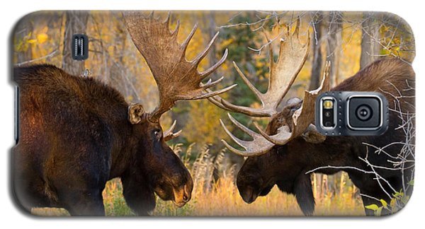 Moose Battle Galaxy S5 Case by Aaron Whittemore