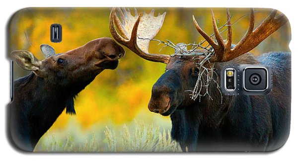 Galaxy S5 Case featuring the photograph Moose Be Love by Aaron Whittemore