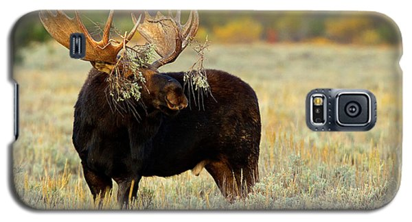 Galaxy S5 Case featuring the photograph Moose Camo by Aaron Whittemore