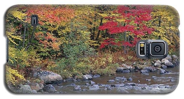 Moose River Autumn Galaxy S5 Case by Alan L Graham