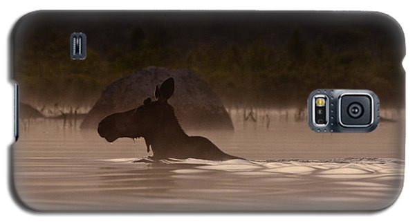 Galaxy S5 Case featuring the photograph Moose Swim by Brent L Ander