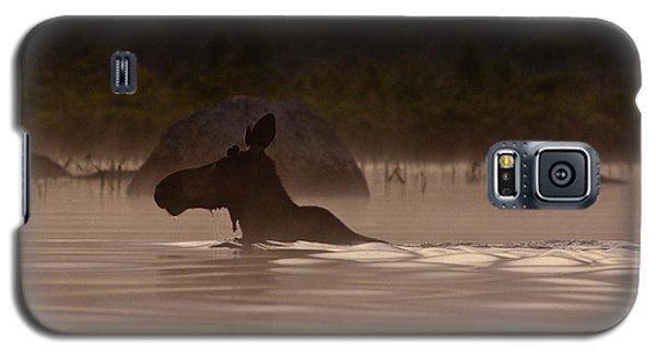 Moose Swim Galaxy S5 Case