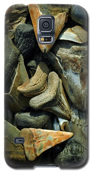 More Megalodon Teeth Galaxy S5 Case