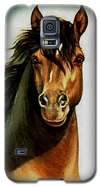 Galaxy S5 Case featuring the painting Morgan Horse by Loxi Sibley