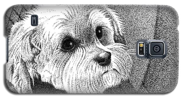Morkie Galaxy S5 Case