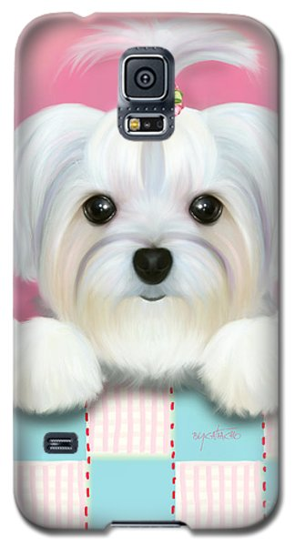 Morkie Shelly Galaxy S5 Case