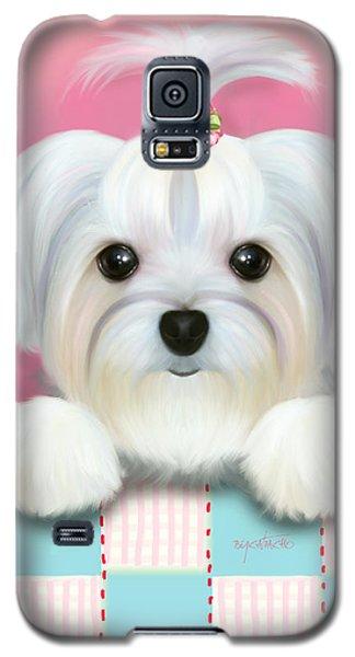 Morkie Shelly Galaxy S5 Case