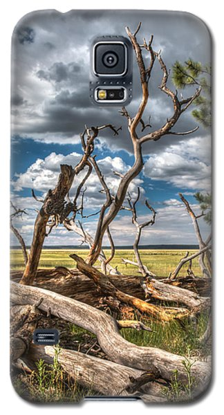Mormon Lake Az Galaxy S5 Case