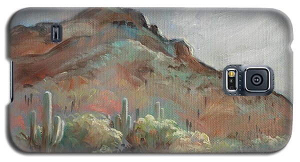 Morning At Usery Mountain Park Galaxy S5 Case