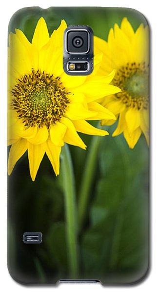 Morning Balsamroot Galaxy S5 Case