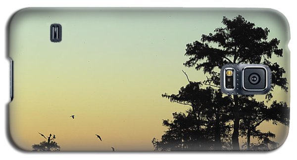 Galaxy S5 Case featuring the photograph Morning Birds by Silke Brubaker