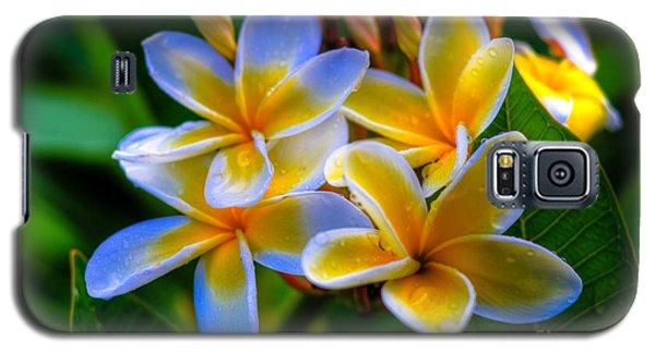 Morning Bloom Galaxy S5 Case