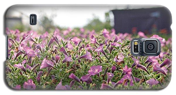 Morning Bugles Galaxy S5 Case