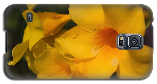 Galaxy S5 Case featuring the photograph Morning  Delight by Miguel Winterpacht