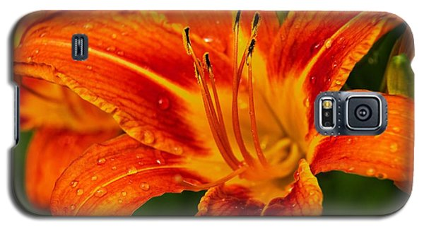 Galaxy S5 Case featuring the photograph Morning Dew by Dave Files