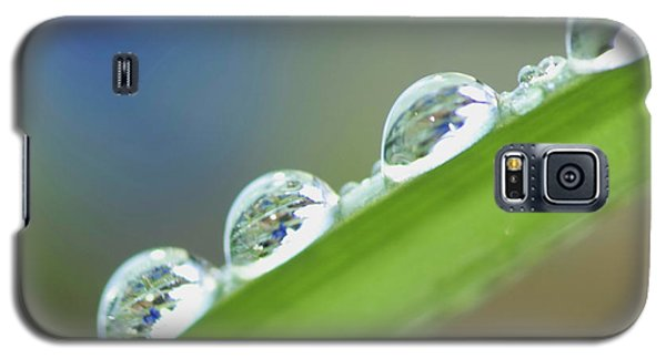 Morning Dew Drops Galaxy S5 Case by Heiko Koehrer-Wagner