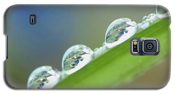 Morning Dew Drops Galaxy S5 Case