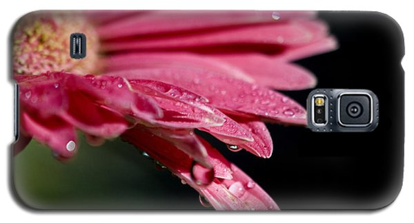 Galaxy S5 Case featuring the photograph Morning Dew by Joe Schofield