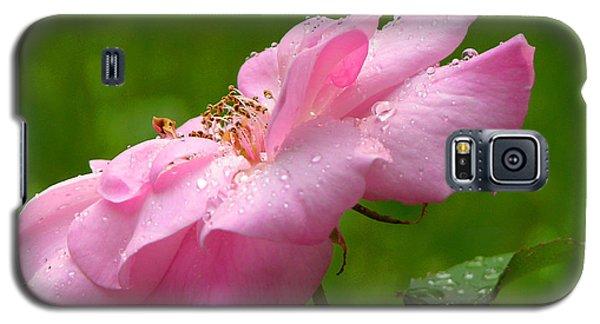 Morning Dew Galaxy S5 Case by Mariarosa Rockefeller