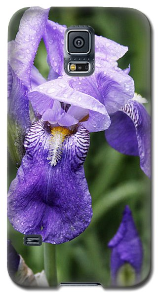 Morning Dew On The Iris Galaxy S5 Case
