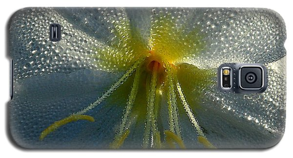 Morning Dew Galaxy S5 Case by Steven Reed