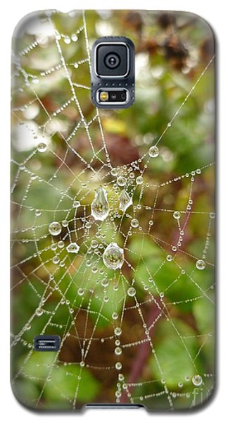 Morning Dew Galaxy S5 Case by Vicki Spindler