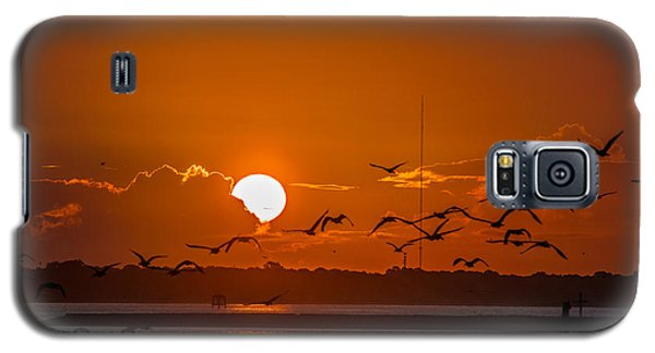 Morning Flight Galaxy S5 Case by RC Pics