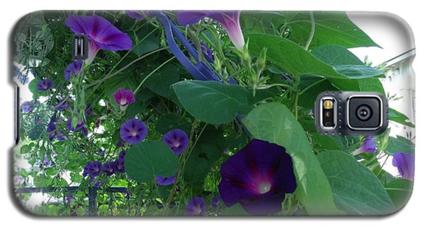 Morning Glories Galore Galaxy S5 Case