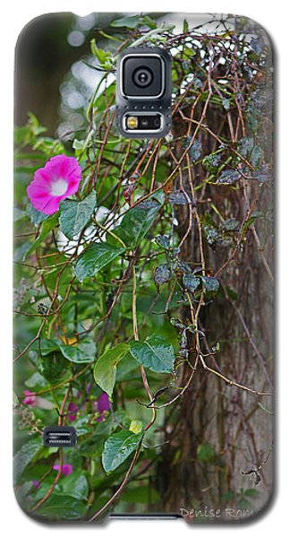 Morning Glory On The Fence Galaxy S5 Case