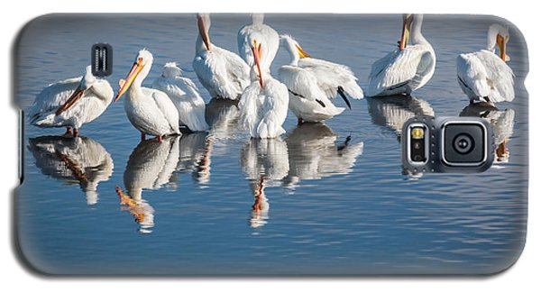 Galaxy S5 Case featuring the photograph Morning Groom by Jan Davies