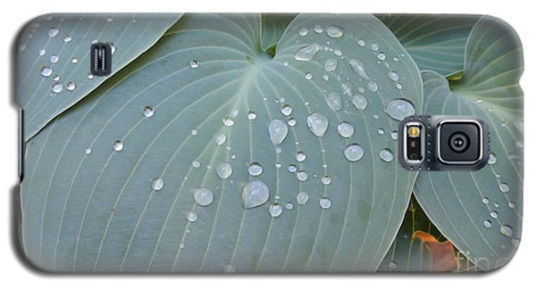 Morning Hoya Galaxy S5 Case
