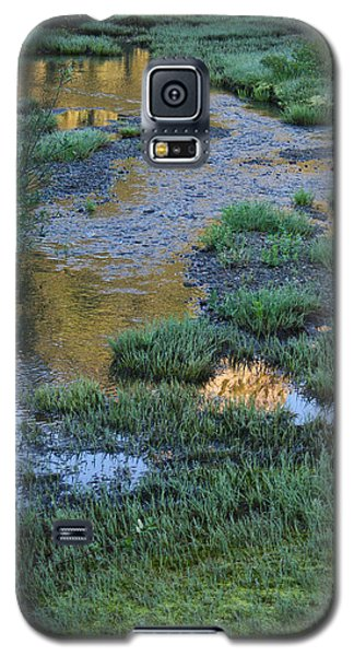 Morning Magic Tipsoo Lake Wa Galaxy S5 Case