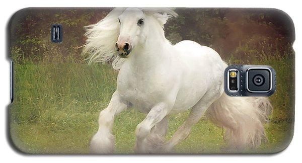 White Horse Galaxy S5 Case - Morning Mist C by Fran J Scott