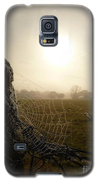 Morning Mist Galaxy S5 Case by Vicki Spindler